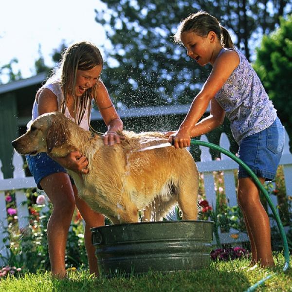 Πιο δραστήρια τα παιδιά με σκύλο
